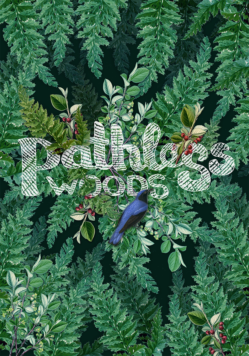 work_PathlessWoods2